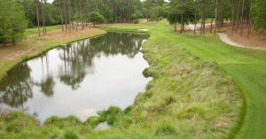 TPC Hole 5